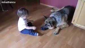 سگ ها بچه ها را دوست دارند...
