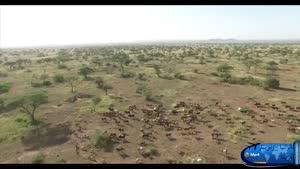 دیدنی های تانزانیا و زانیبار