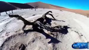 طبیعت جمهوری نامبیا یا جمهوری نامیبیا