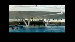 دیدنی هایجزیره ی کیش - پارک دلفین ها