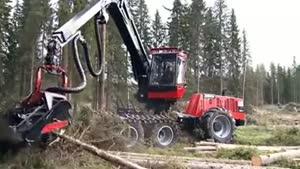 ماشین جدید قطع درخت بسیار قوی و سریع