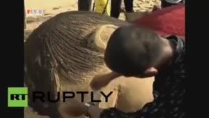 یک هنرمند هندی با ماسههای ساحلی، مجسمهای از کودک
