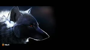 داستان کوتاه - تربیت گرگ