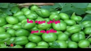 خواص میوه ها - گوجه سبز