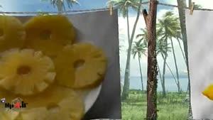 خواص میوه ها - آناناس