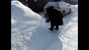 میمون بیچاره در برف
