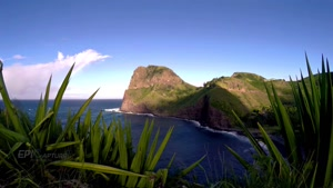 طبیعت زیبای هاوایی - با وضوح ۴k