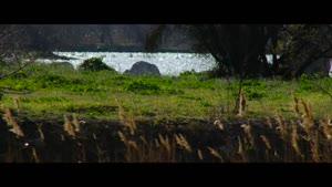 چشم اندازی زیبا از طبیعت وحشی - ۴k