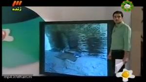 یك اتفاق غیرمنتظره در برنامه زنده-حتما نگاه کنید لحظه تکان دهنده دیدن مادر