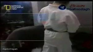 حمله خرس به مجری زن و مرد در برنامه زنده تلوزیونی