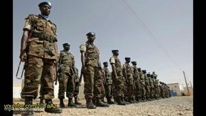 ۱۰ تا از کوچکترین ارتش های دنیا