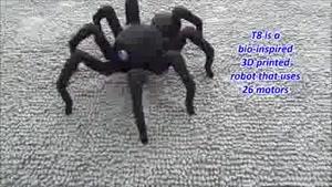 روبات عنکبوتی