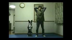 بشین وپاشوی سگ با صاحبش