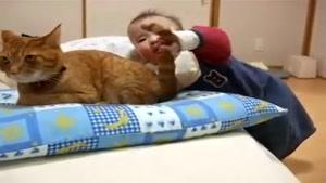 کودک و گربه خوش اخلاق