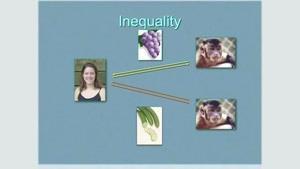 اعتراض میمون به نابرابری