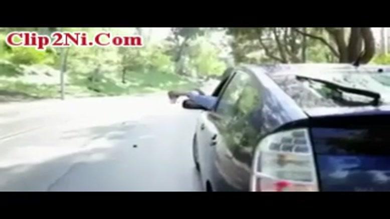 پلیس های دیوانه