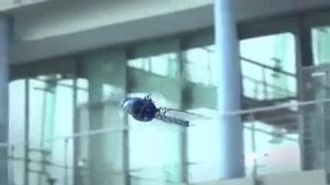 اولین سنجاقک روباتیک