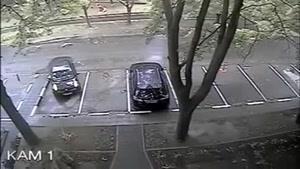 پارک کردن ماشین توسط بدترین راننده دنیا