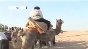 مسابقات جالب شتر سواری در یزد