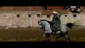 رقص اسب
