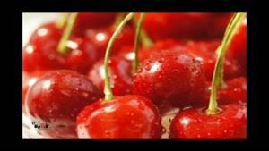 خواص میوه ها - آلبالو