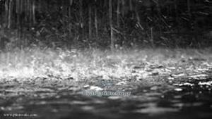 بزن بارون از حمید عسگری خیلی قشنگه