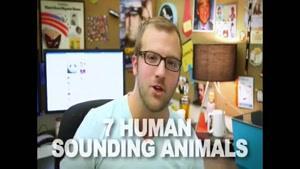 صدا های جالب حیوانات مختلف - بسیار جالب