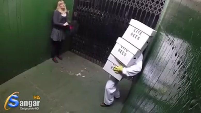 دوربین مخفی زنبوری