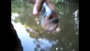 ماهی برنده