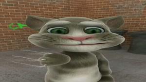 گربه ملوس گروه
