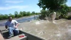صحنه های لذت بخش در رودخانه