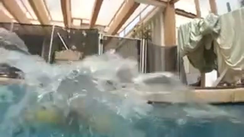 کودک شناگر