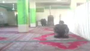 خواندن نماز وحشت