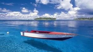 اولین رستوران زیر آب