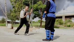 مبارزه ی کنگ فو
