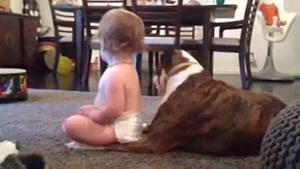 تمیز کردن کودک توسط سگ