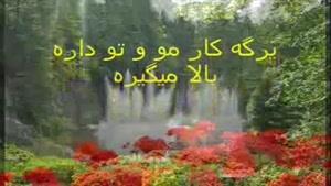استاد محمدرضا شجریان - با لهجه مشهدی