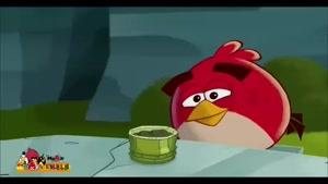 پرندگان خشمگین -  غذای سفارشی