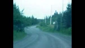 رد شدن موجود عجیب از جاده