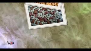 خواص حبوبات - لوبیا