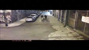ضرب و شتم یک مرد توسط پلیس آمریکا