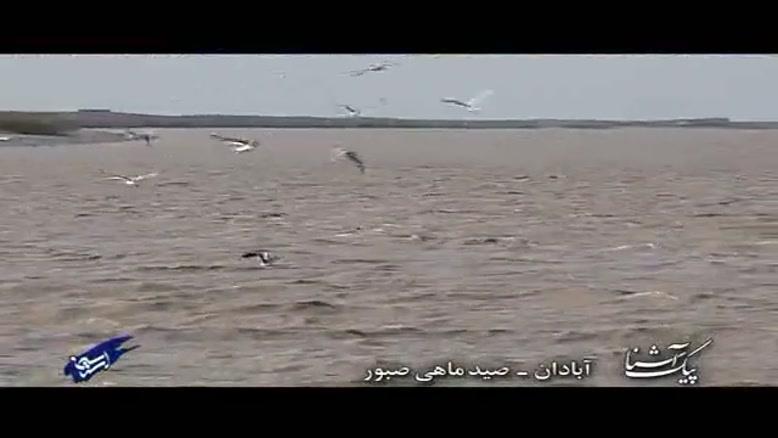 پیک آشناآبادان - صید ماهی صبور
