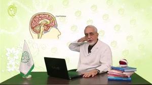دکتر محمد صادق کرمانی - افت قند و احساس گرسنگی شدید در رژیم