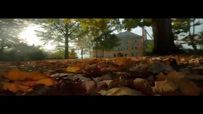 تایم لپس پاییز