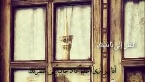 حامد زماني امام رضا(ع)