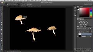 آموزش فتوشاپ - ساخت خانه قارچی - قسمت ۱۱