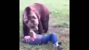خرس شوخ ندیده بودیم که دیدیم!!!!!