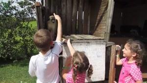 کلیپی جالب و خنده دار از میمون ها