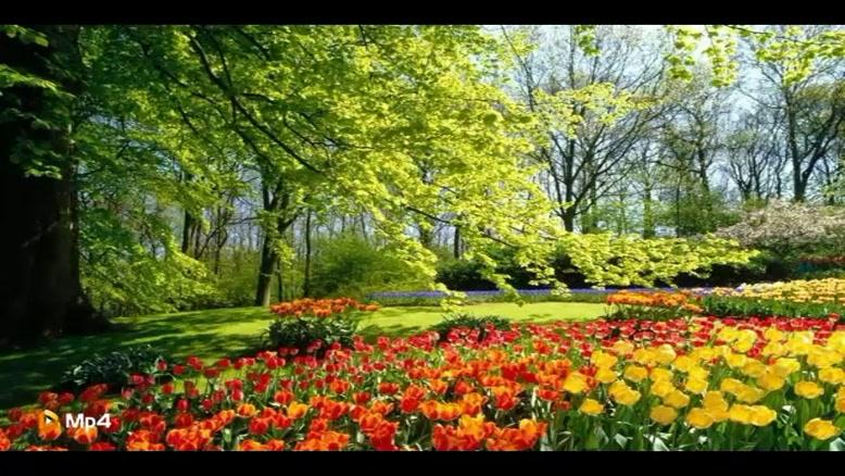 ترانه کودکانه بهار بهار بهاره