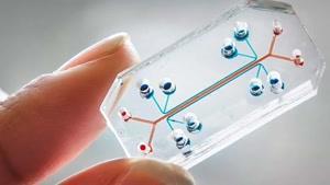 فناوری های اینترنتی پزشکی